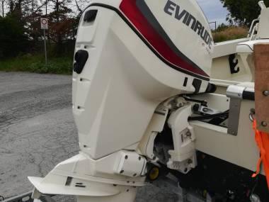 Evinrude ETEC 115 CV anno 2017 Motori
