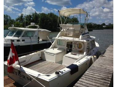 Bertram 31 Flybridge