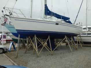 Catalina 320 C