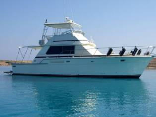 Bertram 42 Flybridge Motor Yacht