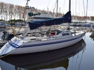 Lito Marin Sirena 38