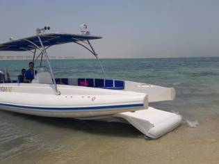 Ocean Craft Marine Beachlander 8.75