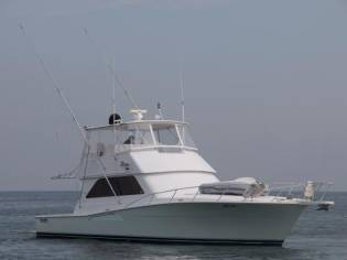 Viking Yachts Convertible