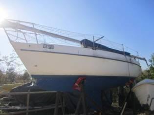 Sailboat Zuanelli 25