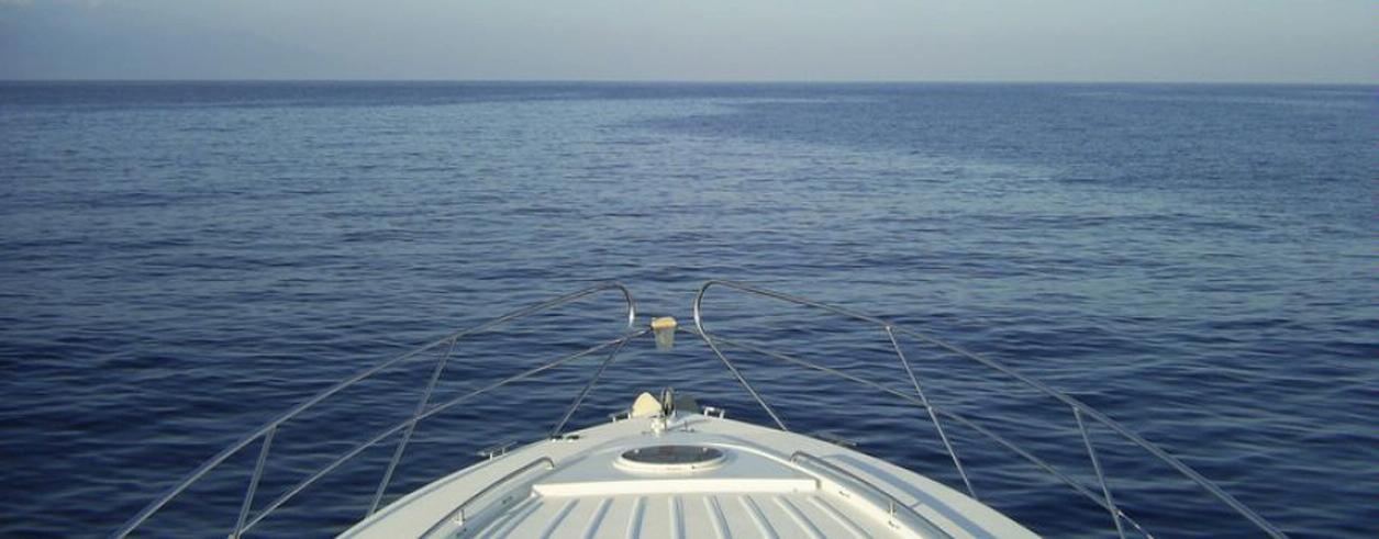 Swans Marine Foto 2