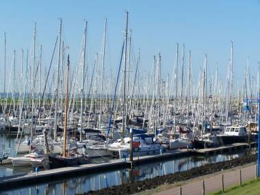 Stichting Waddenhaven Texel Noord-Holland