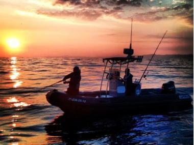 Astec Vigilant & Diving 650