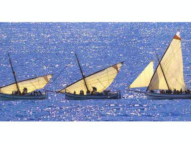 Vela Latina | Foto 2 | Barche a vela